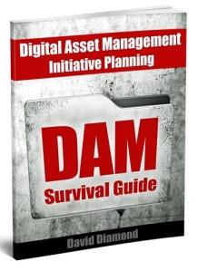 "Book cover for digital asset management book, ""DAM Survival Guide."""